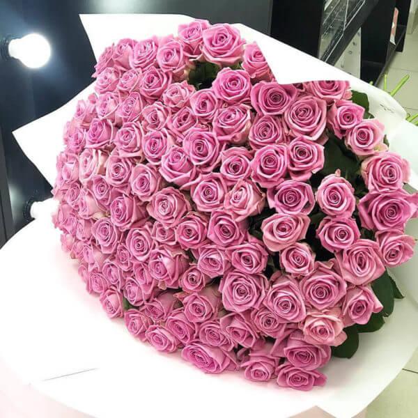 купить 101 розу в москве