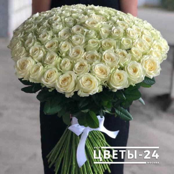 101 роза белая доставка