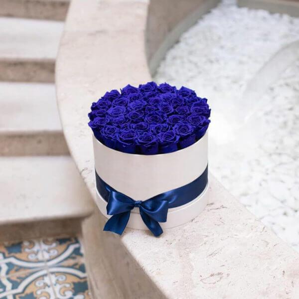 синие розы коробка