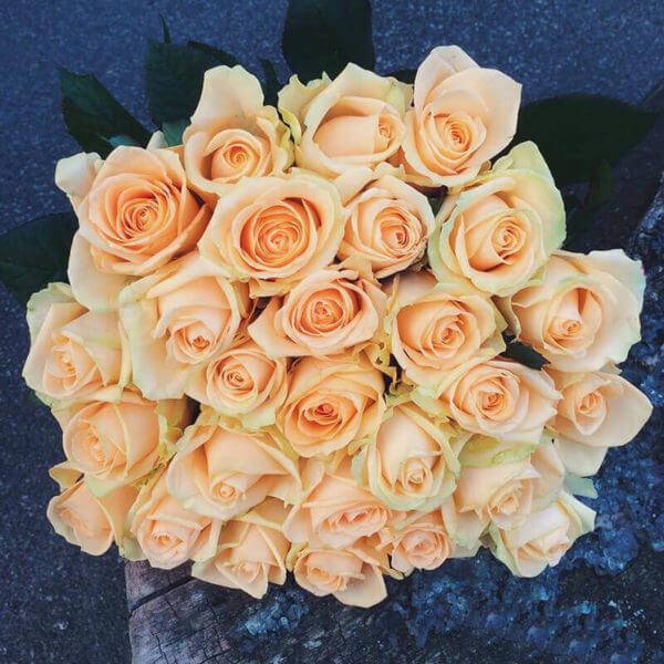 купить розы недорого