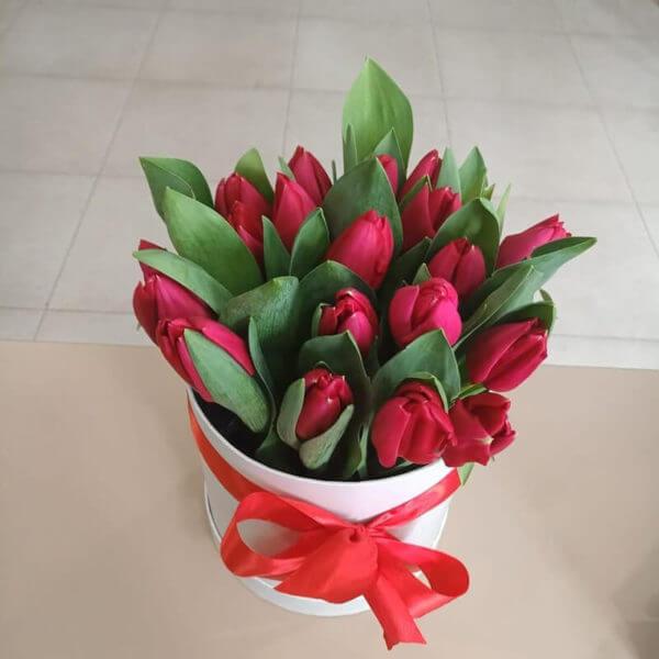 цветы в коробке тюльпан