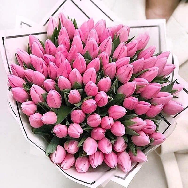 тюльпаны доставка