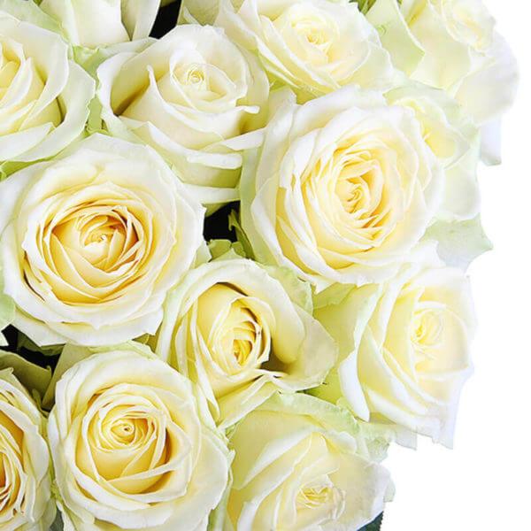 заказать розы с доставкой в москве