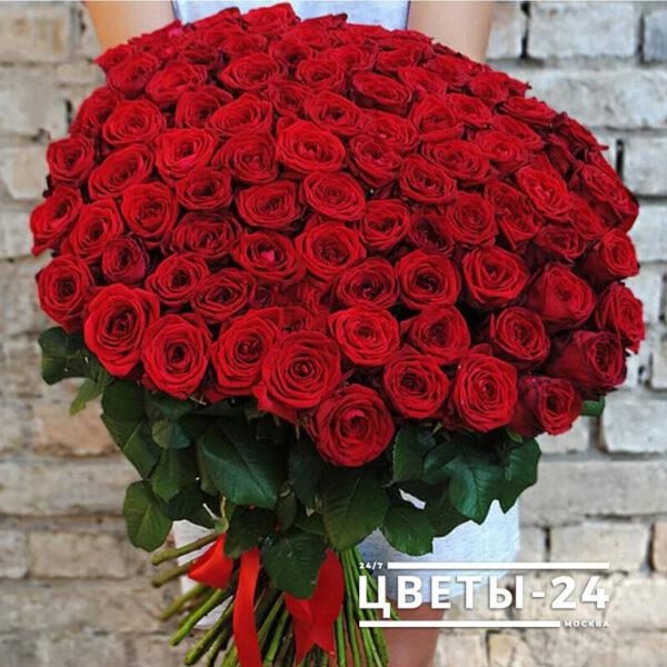 101 роза москва