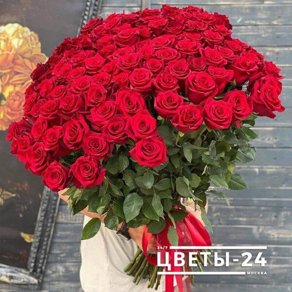 101 роза купить