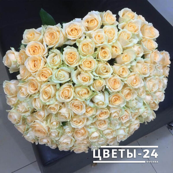 101 кремовая роза купить