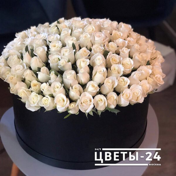101 роза в коробке купить