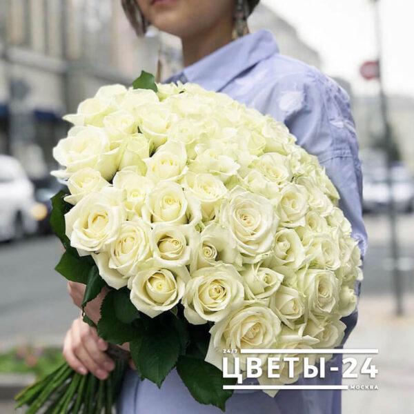 розы 51 шт