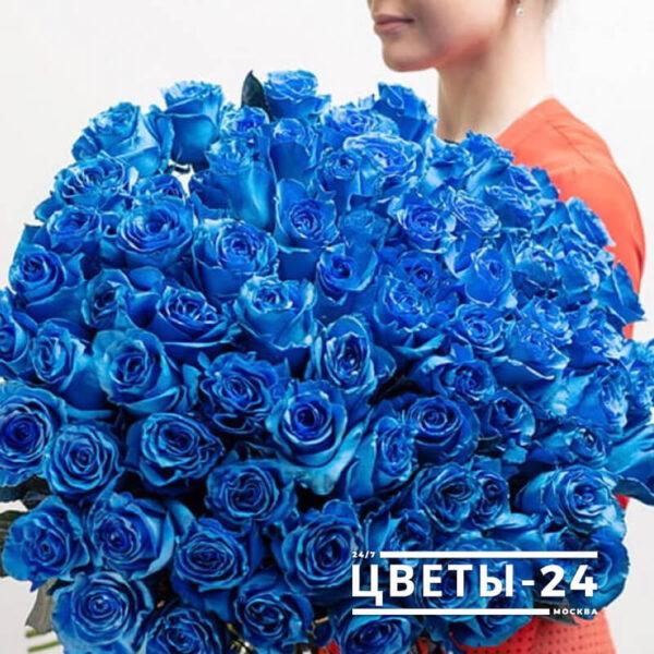 букет синих роз купить