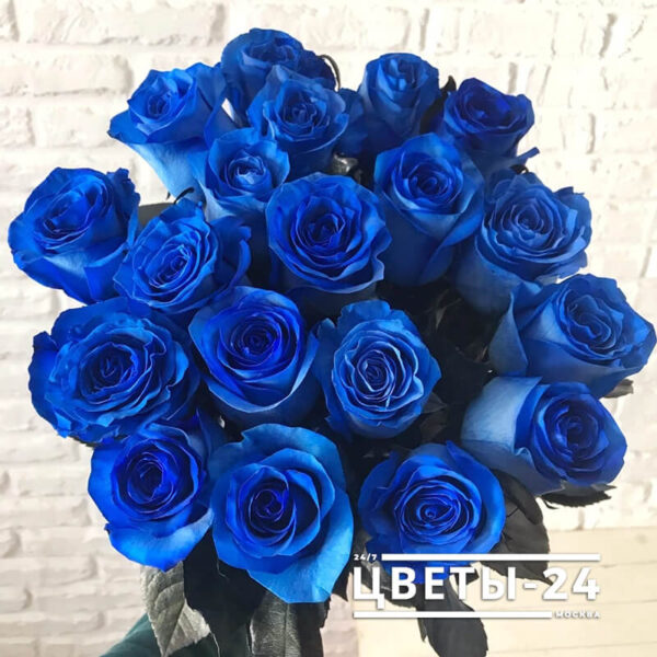 синие розы купить