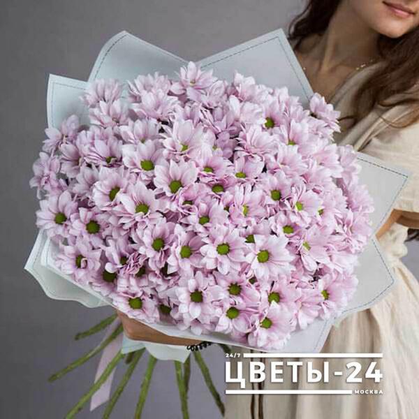 хризантемы купить букет
