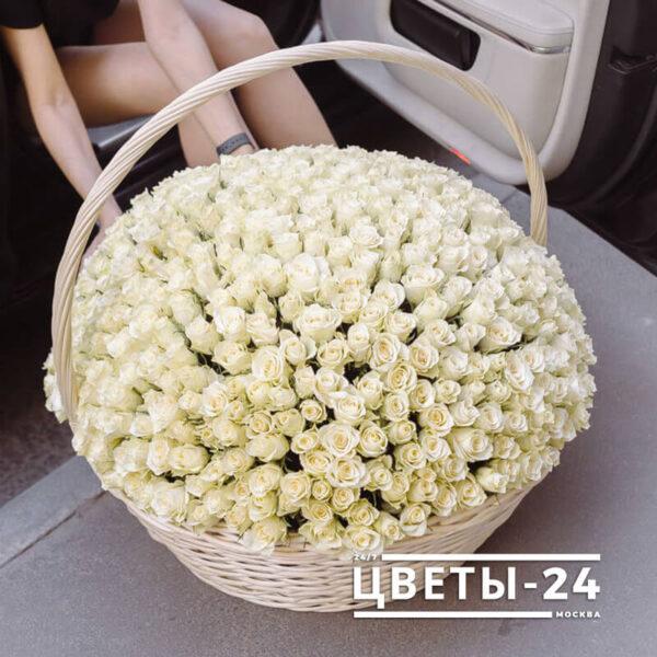 корзина 201 роза купить