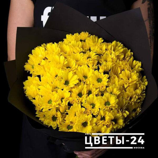 цветы хризантемы купить