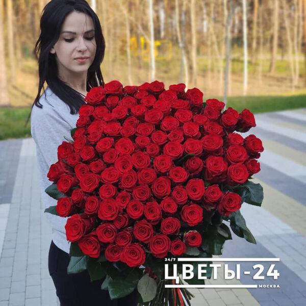 розы метровые цена в москве