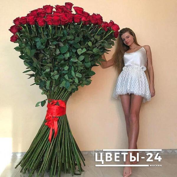 розы 2 метра купить