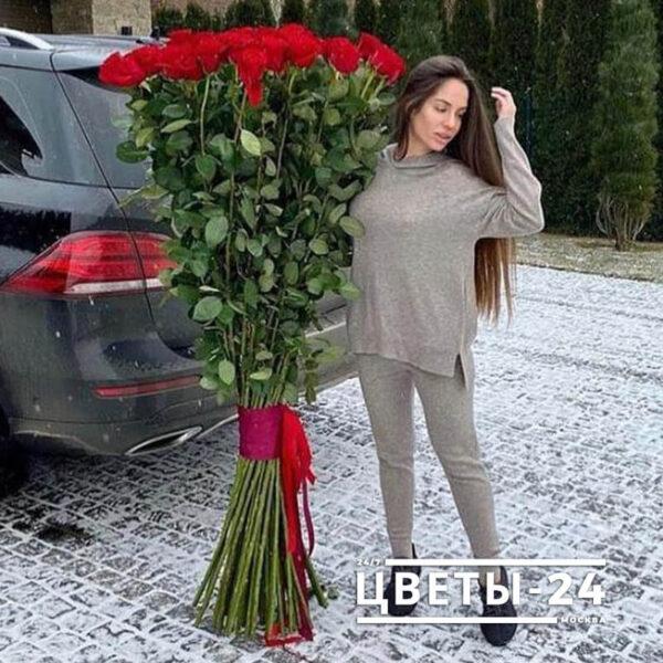 высокие розы 170 см