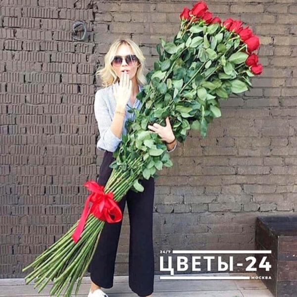 высокие розы 2